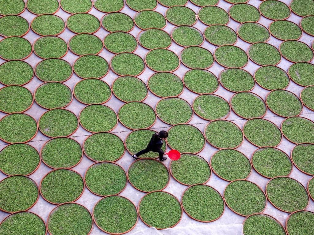19 hình ảnh cho thấy sự khổng lồ của Trung Quốc - ảnh 8