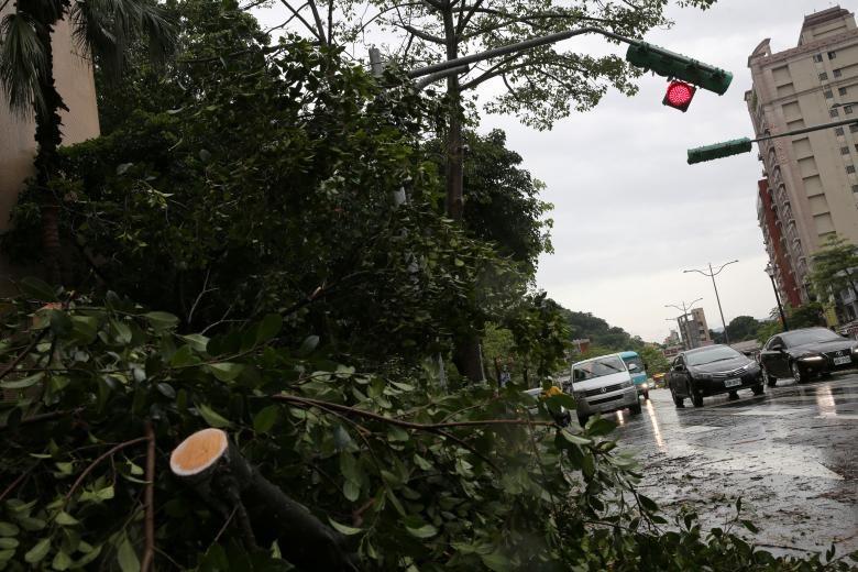 Hình ảnh tan hoang sau khi siêu bão Maria đổ bộ Trung Quốc - ảnh 5