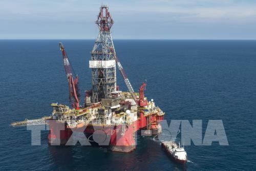 Giá dầu châu Á giảm nhẹ trong phiên chiều 19/7. Ảnh: AFP/TTXVN