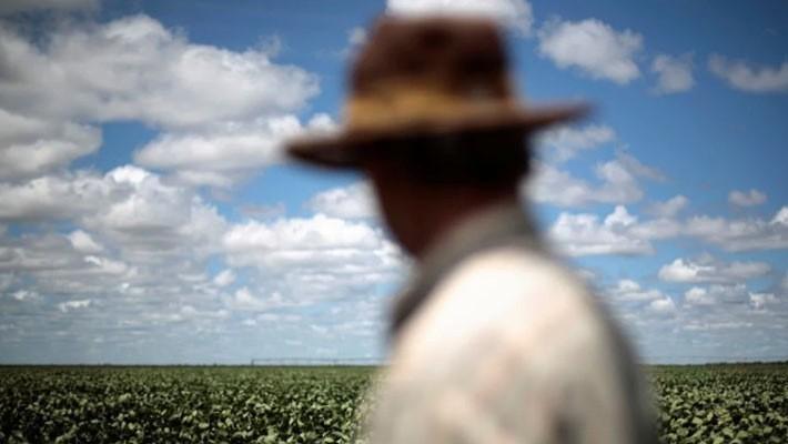 Người nông dân trên một cánh đồng đậu tương ở Brazil vào năm 2014 - Ảnh: Reuters/SCMP.