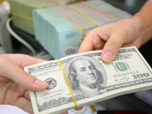 Giá USD tại các ngân hàng thương mại sáng nay giảm. Ảnh minh họa: TTXVN
