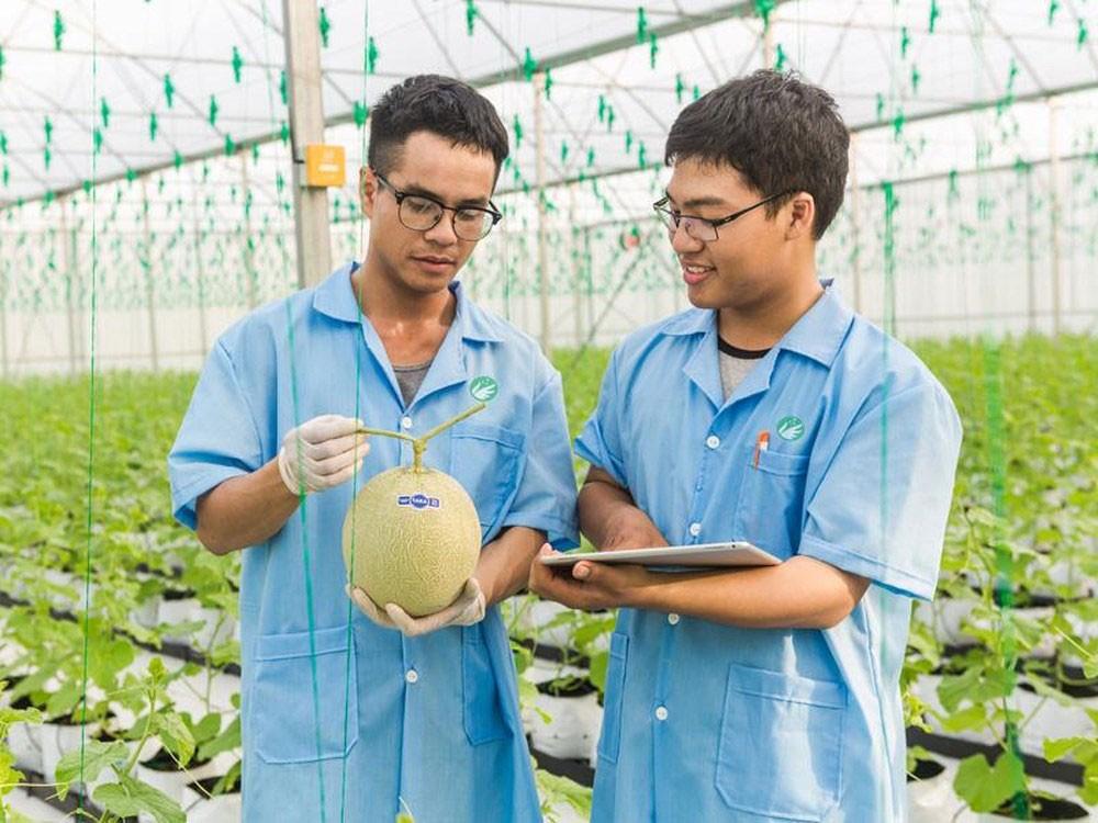 Các sản phẩm nông nghiệp sạch đã góp phần mang về cho PAN Group mức doanh thu và lợi nhuận vượt bậc trong năm 2017 và quý I/2018