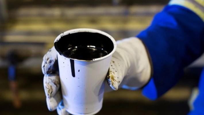 Một cốc dầu nặng trong tay người công nhân tại một mỏ dầu ở Alberta, Mỹ, tháng 8/2013 - Ảnh: Reuters.