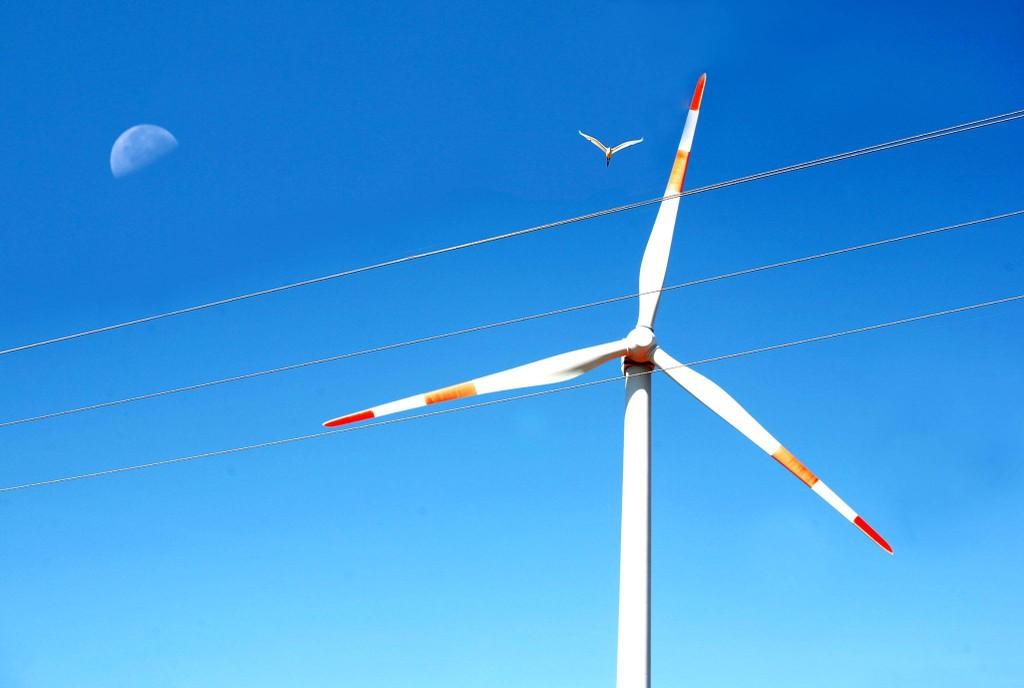 Ninh Thuận phấn đấu trở thành tỉnh sản xuất năng lượng tái tạo lớn của cả nước. Ảnh Lê Tiên