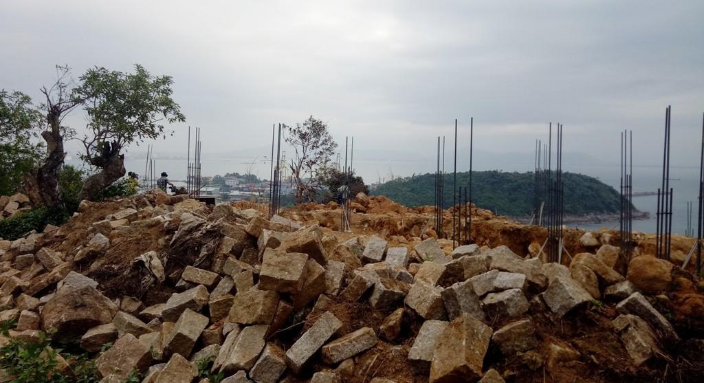 Chủ tịch TP. Đà Nẵng: Đình chỉ thi công dự án Khu du lịch sinh thái Biển Tiên Sa - ảnh 2