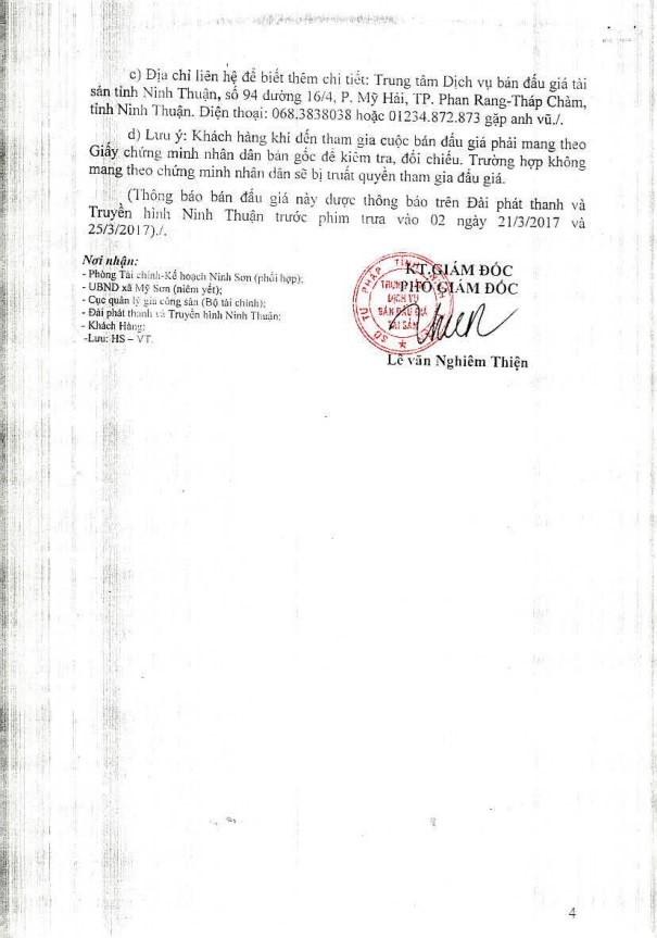 Đấu giá quyền sử dụng đất tại huyện Ninh Sơn, Ninh Thuận - ảnh 4