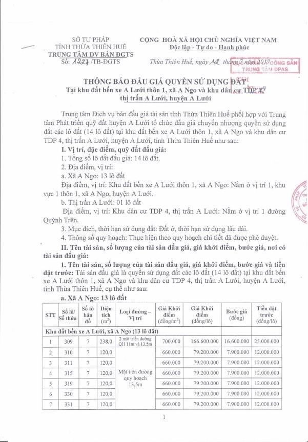 Đấu giá quyền sử dụng đất tại huyện A Lưới, Thừa Thiên Huế - ảnh 1
