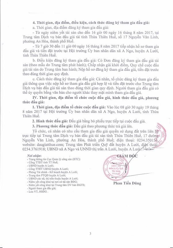 Đấu giá quyền sử dụng đất tại huyện A Lưới, Thừa Thiên Huế - ảnh 3