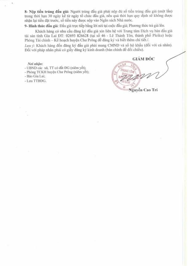 Đấu giá quyền sử dụng đất tại huyện Chư Prông, Gia Lai - ảnh 2