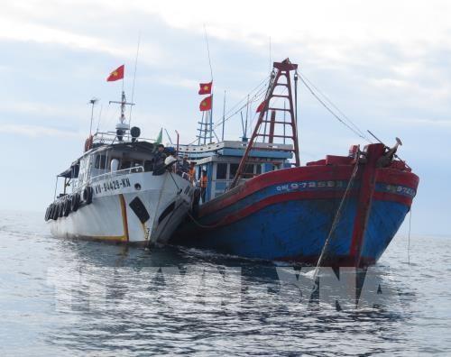 Tàu của lực lượng chức năng Quảng Bình áp sát kiểm tra tàu vi phạm. Ảnh: TTXVN