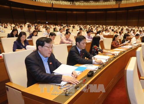 Các Đại biểu Quốc hội biểu quyết thông qua Luật Lâm nghiệp. Ảnh: TTXVN