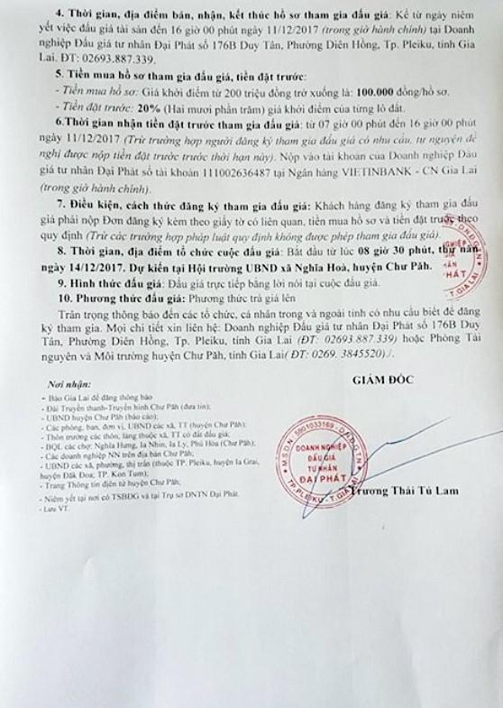 Đấu giá quyền sử dụng đất tại huyện Chư Păh, Gia Lai - ảnh 2