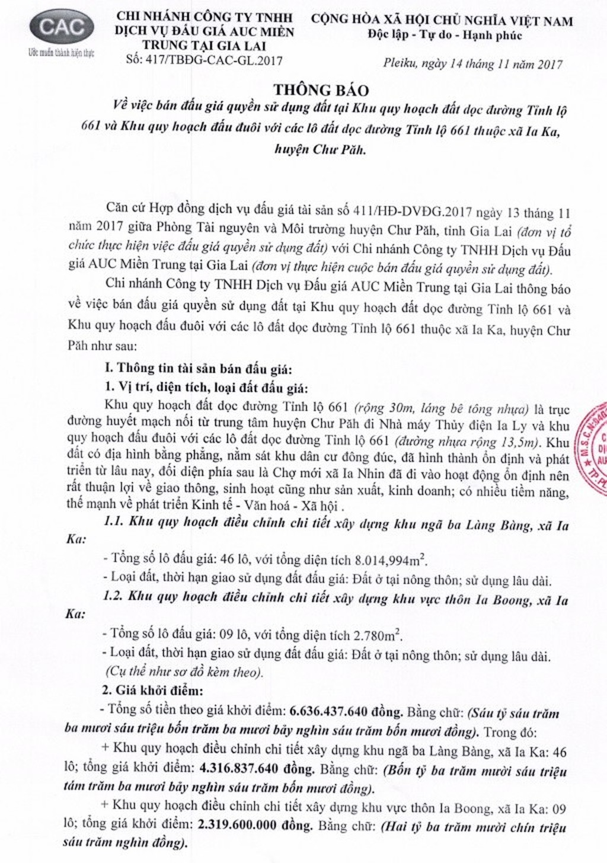 Đấu giá quyền sử dụng đất tại huyện Chư Păh, Gia Lai - ảnh 1