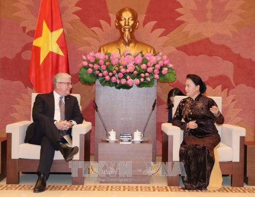 Chủ tịch Quốc hội Nguyễn Thị Kim Ngân tiếp Đại sứ Australia Craig Chittick. Ảnh: TTXVN