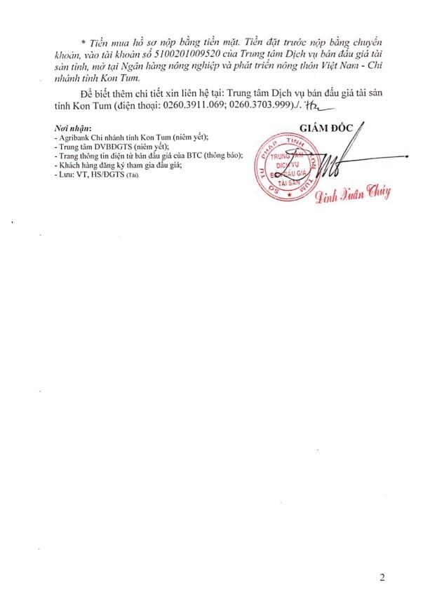 Đấu giá xe ô tô tải tại Kon Tum - ảnh 2