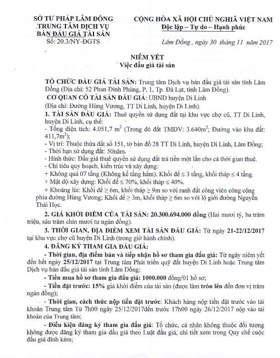 Đấu giá quyền sử dụng đất tại huyện Di Linh, Lâm Đồng - ảnh 1