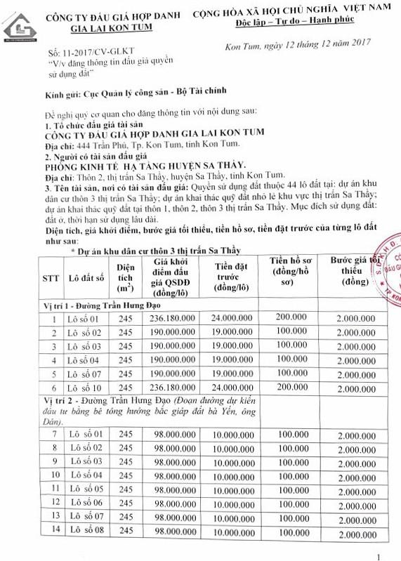 Đấu giá quyền sử dụng đất tại huyện Sa Thầy, Kon Tum - ảnh 1