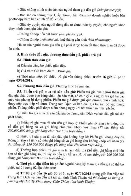 Đấu giá quyền sử dụng đất tại huyện Thuận Nam, Ninh Thuận - ảnh 3