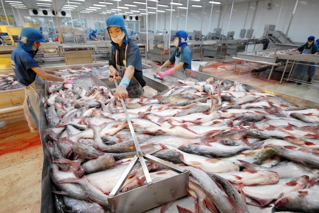 Xuất khẩu nông, lâm, thuỷ sản đạt hơn 36 tỷ USD