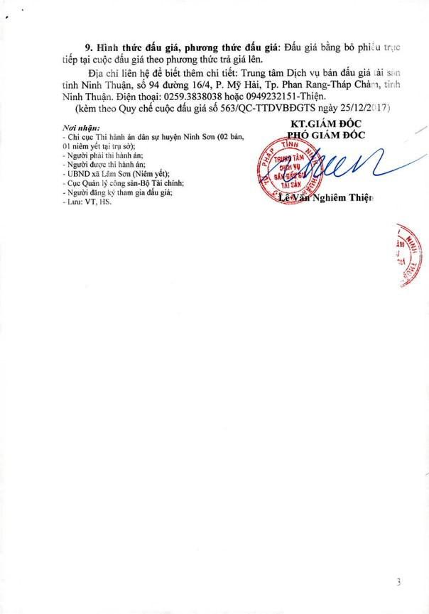Đấu giá quyền sử dụng đất tại huyện Ninh Sơn, Ninh Thuận - ảnh 3