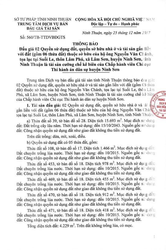 Đấu giá quyền sử dụng đất tại huyện Ninh Sơn, Ninh Thuận - ảnh 1