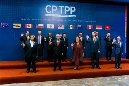 Việt Nam ký CPTPP, mở ra chương mới cho thương mại toàn cầu - ảnh 2