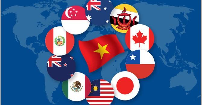 11 nước thành viên CPTPP. Ảnh: WB