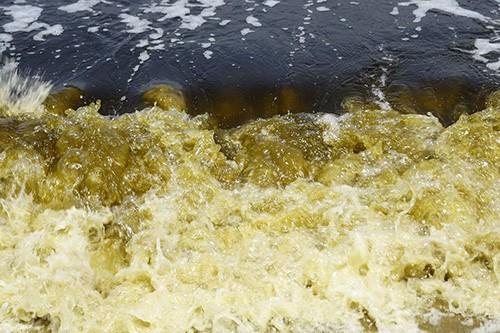 Vệt nước màu đen kéo dài 5km ở biển Đà Nẵng - ảnh 1