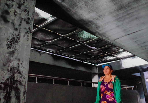 Cư dân Carina được bồi thường thế nào trong vụ cháy 13 người tử vong - ảnh 1