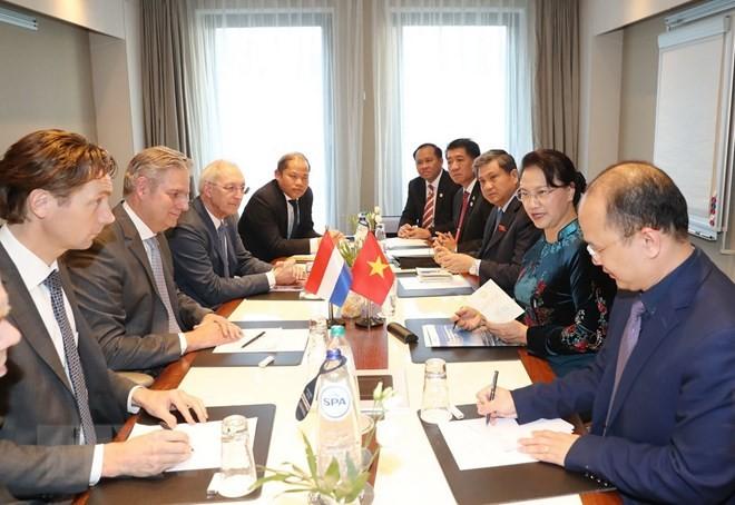 Chủ tịch Quốc hội Nguyễn Thị Kim Ngân làm việc với lãnh đạo Phòng Thương mại Hà Lan-Việt Nam. Ảnh: TTXVN