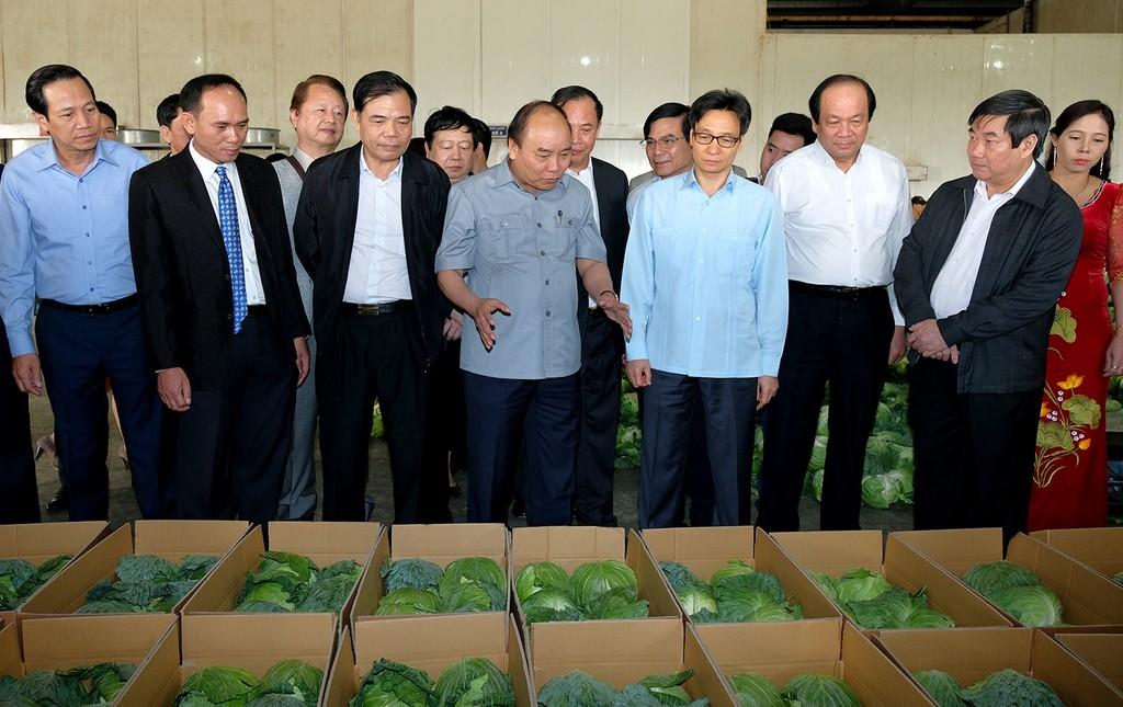 Thủ tướng đối thoại với nông dân - ảnh 2