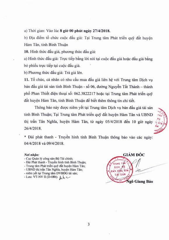 Đấu giá quyền sử dụng đất tại huyện Hàm Tân, Bình Thuận - ảnh 3