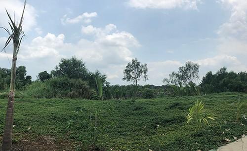 Khu đất đã được chuyển nhượng với giá rẻ.