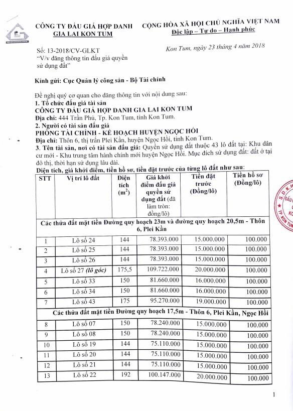 Đấu giá quyền sử dụng đất tại huyện Ngọc Hồi, Kon Tum - ảnh 1