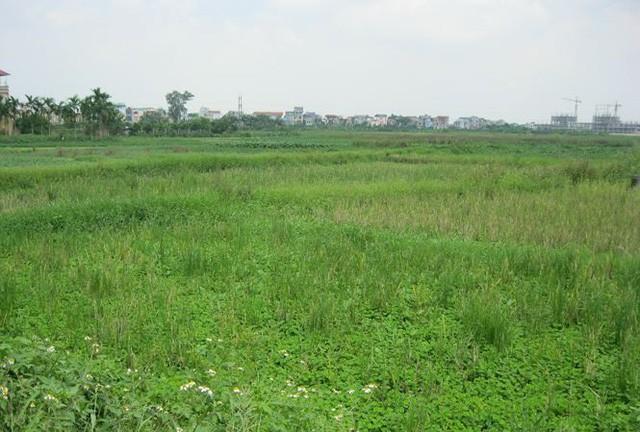 Tổng số tiền dự kiến thu về từ đấu giá đất của Hà Nội khoảng gần 40 nghìn tỷ đồng.