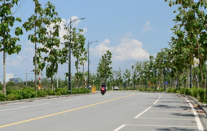 Hiện trạng bốn tuyến đường giá 12.000 tỷ đồng ở Thủ Thiêm - ảnh 9