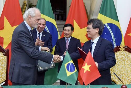 Quan hệ hợp tác Việt Nam - Brazil phát triển tích cực - ảnh 1