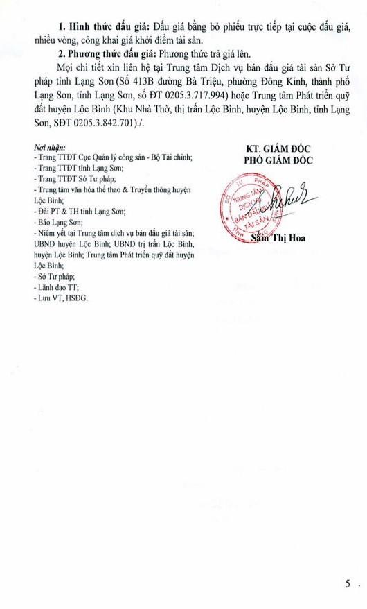Đấu giá quyền sử dụng đất tại huyện Lộc Bình, Lạng Sơn - ảnh 5