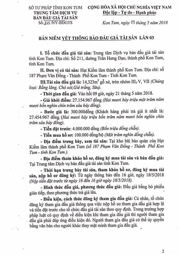 Đấu giá gỗ xẻ, tròn nhóm III, V, VII tại Kon Tum - ảnh 1