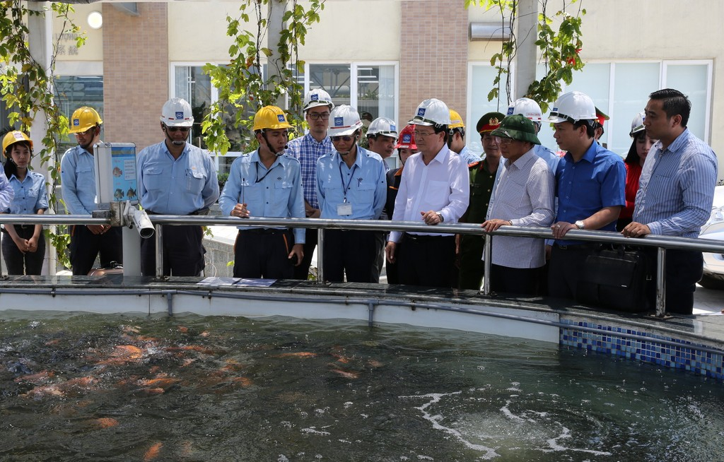 Phó Thủ tướng kiểm tra bể nước thải sau xử lý. Hiện tại, doanh nghiệp đã cho thả cá vào bể, có camera theo dõi sức khoẻ đàn cá, truyền hình ảnh ra ngoài cổng nhà máy 24/24h để người dân giám sát. Ảnh: VGP