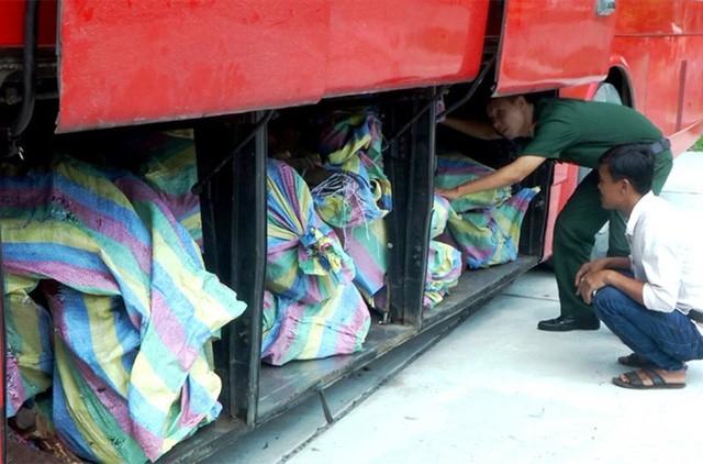 An Giang: Bắt xe ôtô mang biển kiểm soát Campuchia vận chuyển hơn 3 tấn gỗ trắc - ảnh 1