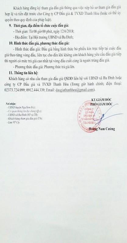 Đấu giá quyền sử dụng đất tại huyện Nga Sơn, Thanh Hóa - ảnh 2