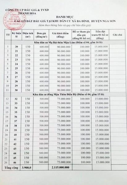 Đấu giá quyền sử dụng đất tại huyện Nga Sơn, Thanh Hóa - ảnh 3