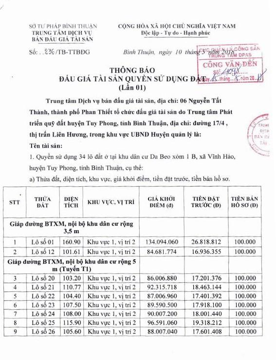 Đấu giá quyền sử dụng đất tại huyện Tuy Phong, Bình Thuận - ảnh 1