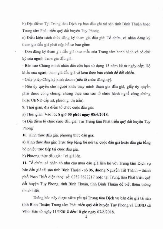 Đấu giá quyền sử dụng đất tại huyện Tuy Phong, Bình Thuận - ảnh 4