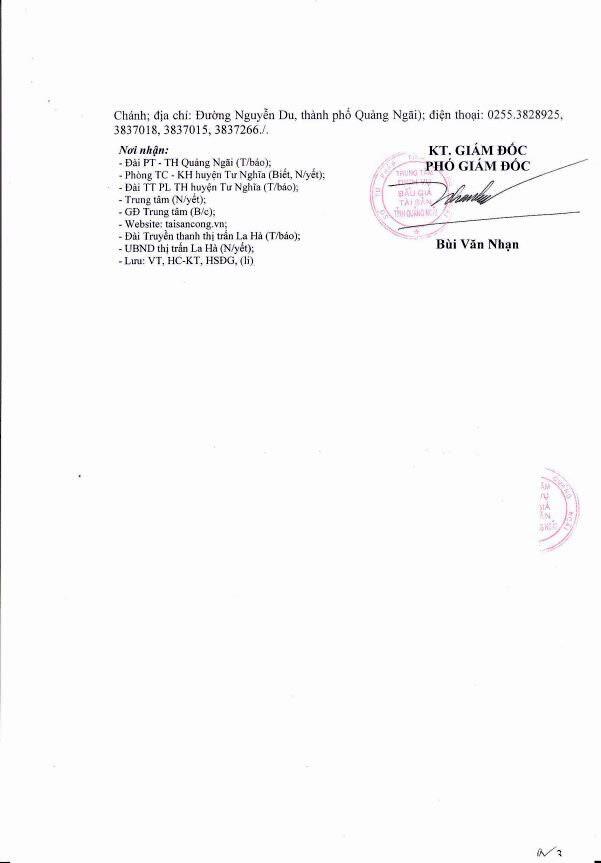 Đấu giá quyền sử dụng đất tại huyện Tư Nghĩa, Quảng Ngãi - ảnh 3