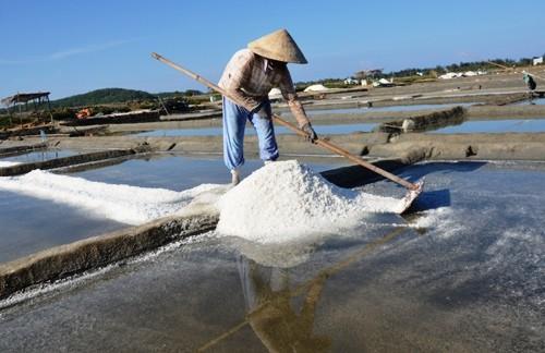 Một phụ nữ vun muối thành đống trên đồng muối Sa Huỳnh.