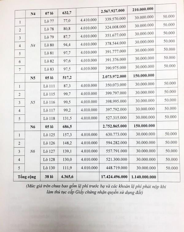Đấu giá quyền sử dụng đất tại huyện An Lão, Hải Phòng - ảnh 4