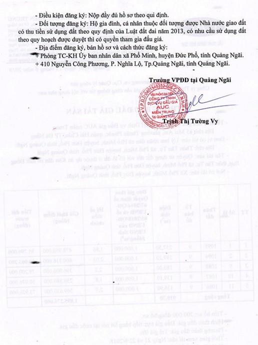 Đấu giá quyền sử dụng đất tại huyện Đức Phổ, Quảng Ngãi - ảnh 2