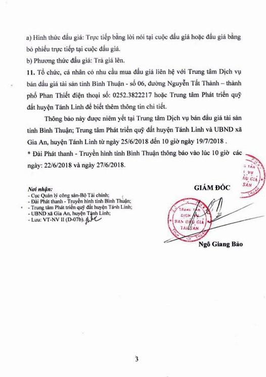 Đấu giá quyền sử dụng đất tại huyện Tánh Linh, Bình Thuận - ảnh 3